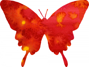 red-butterfly-watercolor-medium-960-x-761